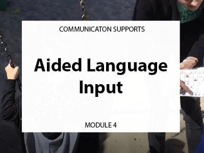 Module 4. Aided language input. Communication supports.
